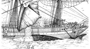 A. Howard Clark . Dibujo que representa la caza de una gran ballena en 1887.
