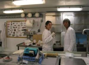 Por el Ártico  Johnna Holding y su colega Regino Martínez, en su laboratorio a bordo del 'Jan Mayen'  A. R.