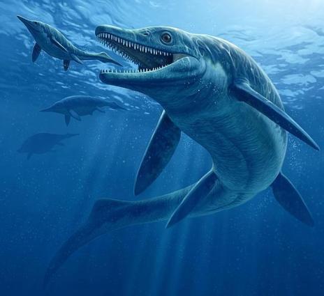 NATIONAL GEOGRAPHICEl Thalattoarchon saurophagis medía 8,6 metros y tenía dientes como cuchillos