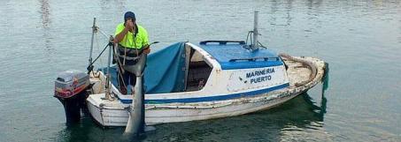 El traslado del escualo por la Marineria.