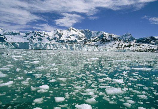 El glaciar de Nordenskjöld con el monte Paget al fondo.