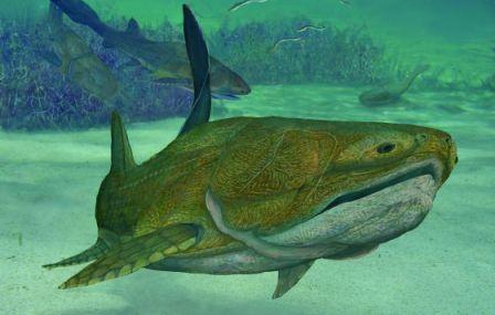 'Entelognathus primordialis'. / NATURE