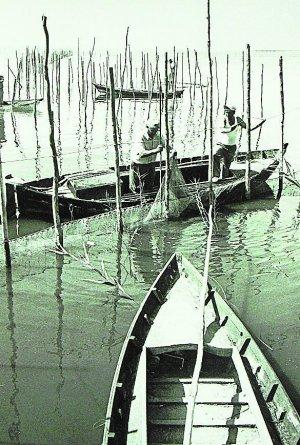 Lago. Barcas con vela latina plegada junto al 'lluent' del sol poniente. :: J. SIGNES