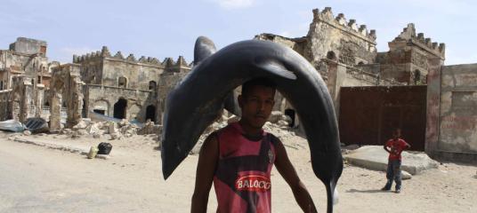 Un porteador carga con un tiburón recién capturado por las calles de Mogadiscio camino de la cercana lonja de pescado (A. Pampliega) Leer más:  Los piratas somalíes se vuelven pescadores - Noticias de Mundo  http://bit.ly/1gsXfQz