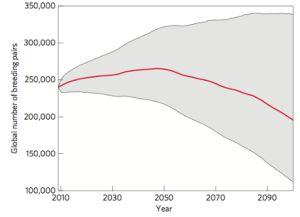 Número total de parejas de pingüino emperador de 2009 a 2100. La línea roja es la mediana. / Nature Climate Change