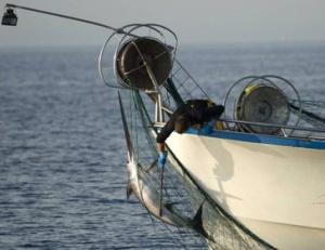 Un arte de pesca ilegal en la UE. / Carlos Suárez/Oceana