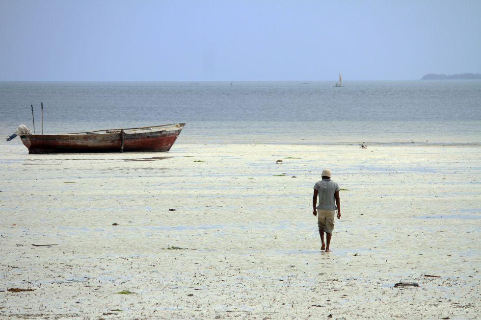La otra gran fuente de ingresos en este pueblo de la costa Este de Zanzíbar es la pesca. La simbiosis con el entorno turístico es fundamental para entender el puzle social ya que la materia prima, además de para el consumo propio, es vendida a los hoteles de la zona. Sebastián Ruiz