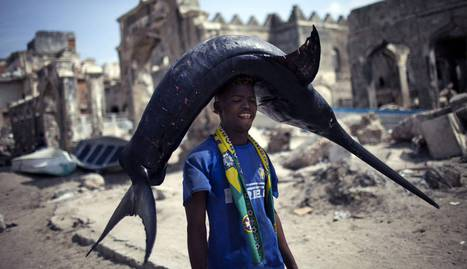 Pescador somalí. /JORDI BERNABEU (CC-BY FLICKR)