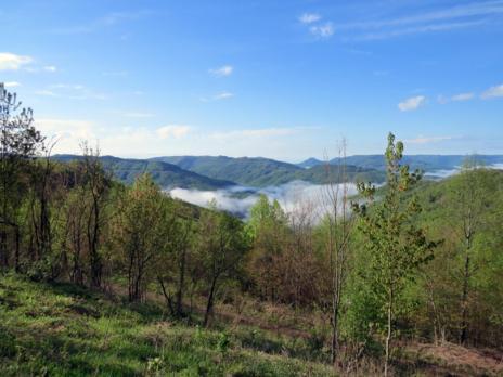 Las Montañas Cumberland, en Tennessee (EEUU). Henry Streby/Gunnar Kramer