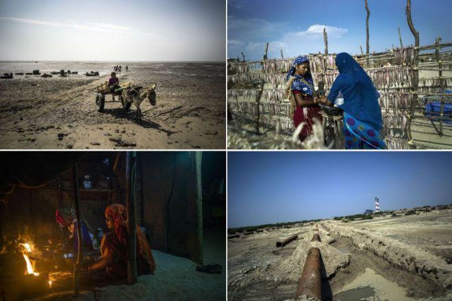 De izquierda a derecha y de arriba a abajo: unos niños ayudan a sus familiares a transportar la mercancía del mar. Jubedaben Manjaliya mendiga un préstamo a un comerciante. Unas mujeres cocinan y unas tuberías sobresalen de la tierra cerca de la planta de Tata. / Sami Siva (ICIJ)