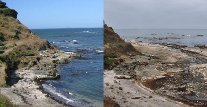 El terremoto de 2010 elevó la isla casi 2 metros dejando este puerto inservible - Foto R. Wesson y Daniel Melnick