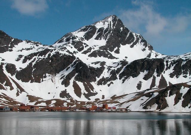 Grytviken 7