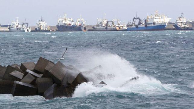 Imagen de archivo de barcos pesqueros en el Puerto de La Luz y Las Palmas (EFE/ELVIRA URQUIJO A.)