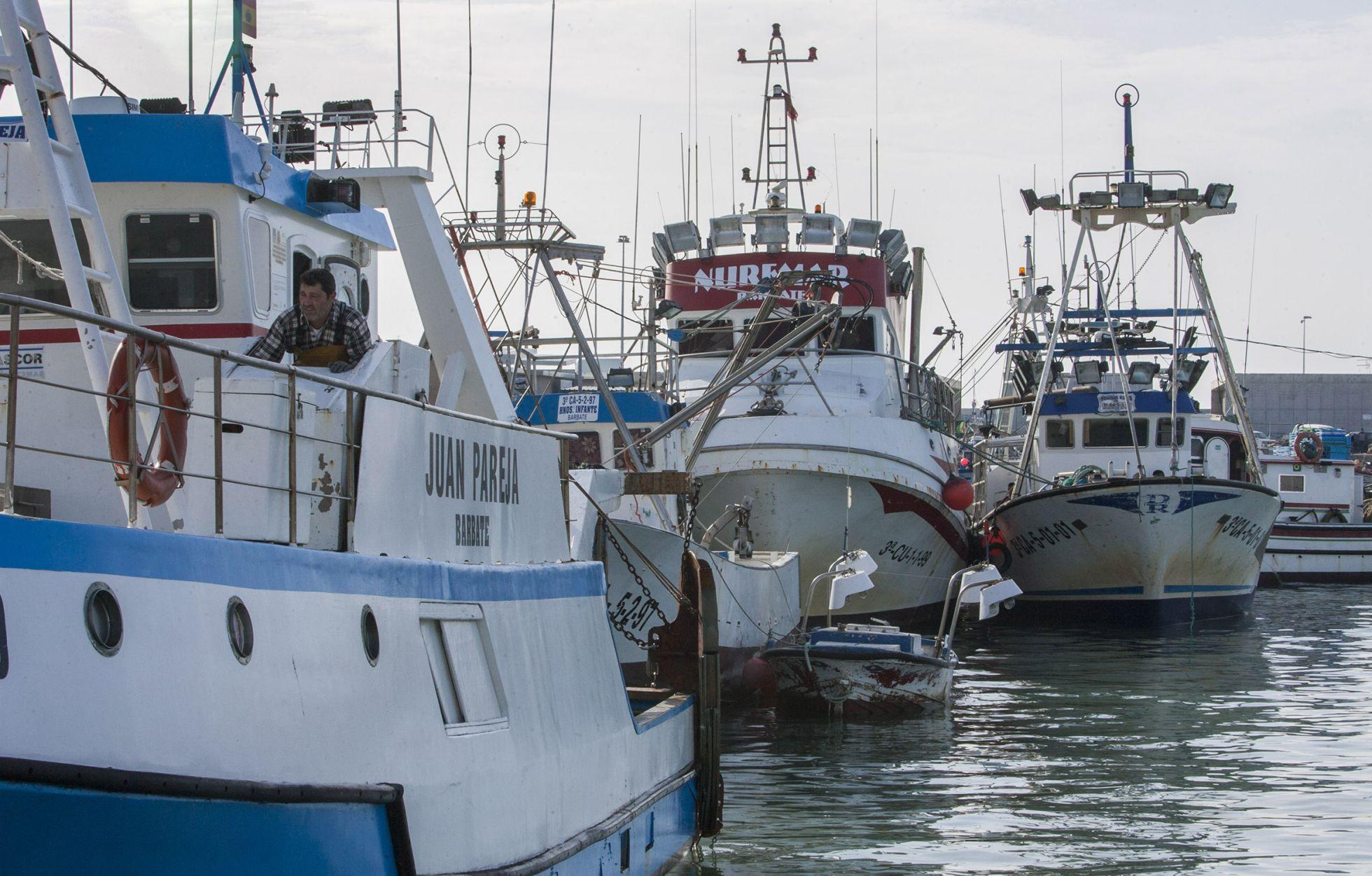 Barcos de pesca amarrados en el puerto de Barbate